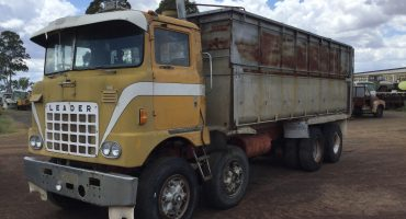 Leader 8 Wheeler Truck